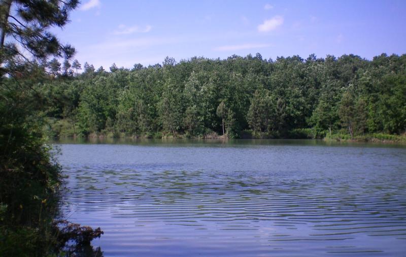 Passeggiata-al-Lago